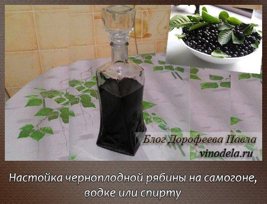 Настойка на черноплодной рябине на самогоне - Настоечки