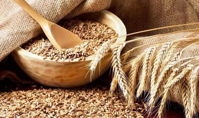 Причины низкого выхода самогона из зерна: выбор и правильная подготовка пшеницы, подробная инструкция и особенности технологии, советы опытных самогонщиков