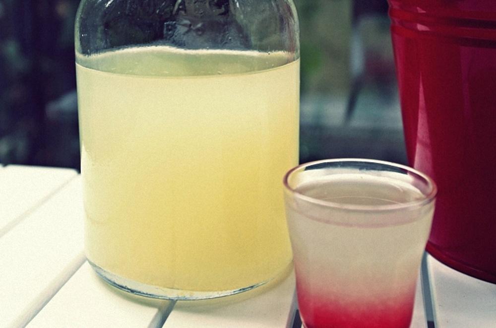 Технология приготовления самогона из березового сока в домашних условиях, рецепты и видео материалы