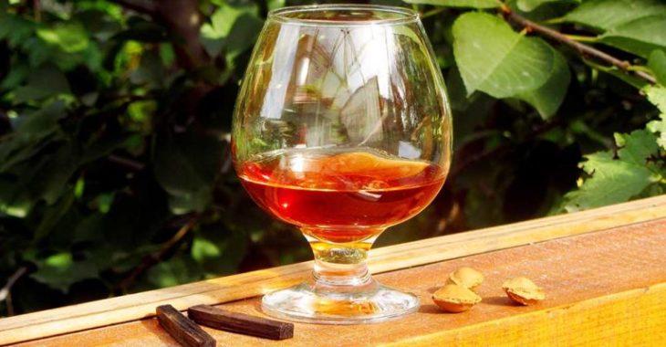 Настойка самогона на аптечной дубовой коре — 3 лучших рецепта
