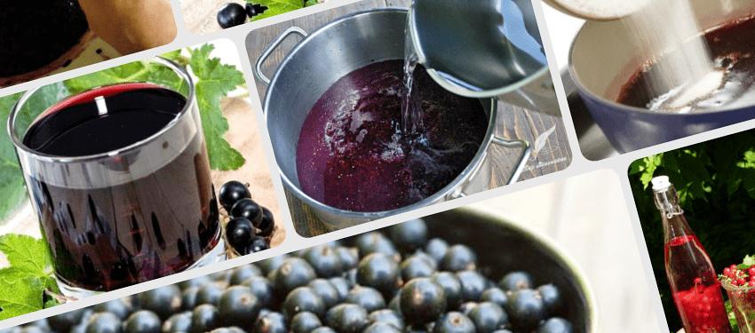 Рецепт домашнего самогона из смородины, настойка на черной смородине самогон на черной смородине рецепт