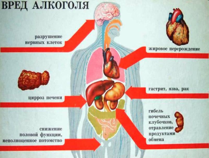 Сколько проживет пьющий человек: продолжительность жизни и причины смерти
